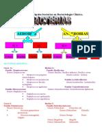 ANTIBACTERIANOS.doc