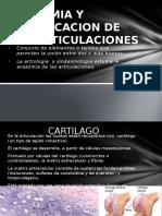 anatomiayclasificaciondelasarticulaciones-130225203653-phpapp01.pptx