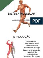 Sistema Muscular 2010[1]