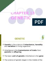 13 Genetics