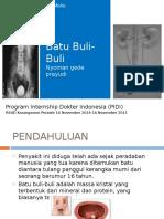 BSK Presentation