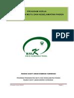 Program Kerja PMKP Revisi