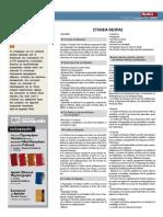 Δοκίμιο.pdf