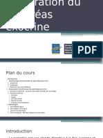 pancréas exocrine(2)