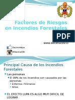 Factores de riesgos en incendios forestales