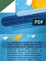 Familias y Discapacidad (Psic. Aral Lara Mejia)
