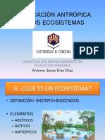 Modificación Antrópica de Los Ecosistemas