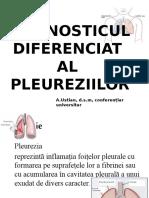 Pleuriziille - Ustian