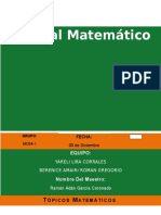 Topicos Matematicos Trabajo Final