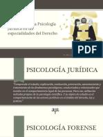 Aplicación de La Psicología Jurídica en Las Especialidades