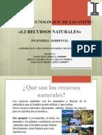 Exposicion de Recursos Naturales