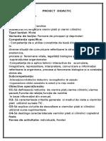 proiect viermii.docx