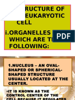 parts of a eukaryotic cell for zoo 101.ppt