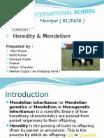 HEREDITY CLASS XI PRESENTATION.ppt