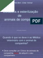 Cuidados Animais Companhia - Sofia Pacheco