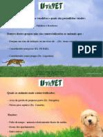 Palestra Animal - Utilvet