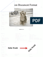 Penetration Document Format Slides