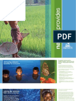 CI Ecosystem Services Brochure