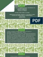 Presentación1 POWER trabajo colaborativo UNADISTA.marieth.pptx