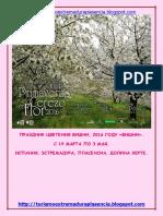 Cerezo en Flor 2016-Ruso