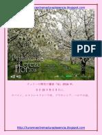 Cerezo en Flor 2016-Japones