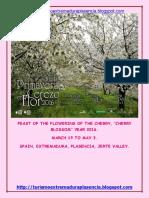 Cerezo en Flor 2016-Ingles