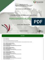 PENSAMIENTO ALGEBRAICO.pdf