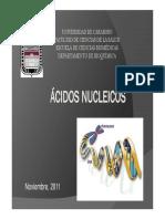 Nucleotidos 1 Medicina 2011