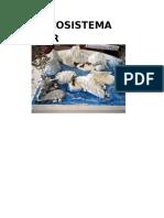 El Ecosistema Polar