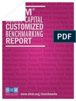 Human Capital Report Sample