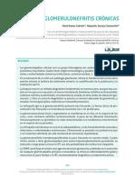 20_glomerulonefritis_cronica.pdf