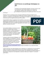 Améliorer vos compétences en jardinage biologique en essayant ces Concepts