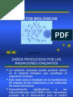 Efectos Biologicos de Las Radiaciones1
