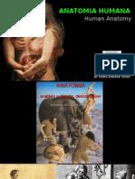 General Principles Human Anatomy