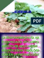 C-t-6-Incidencia (Efectos de La Agrohomeopatía)
