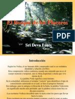 El Bosque de Los Placeres