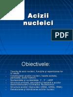 acizii nucleici 2