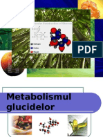 Metabolismul Glucidelor New