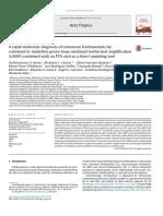 A rapid molecular diagnosis of cutaneous