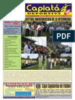 semanario 8