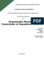 rm SI omc - 2007