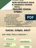 Study Case Interna Pak Yudix