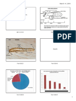 pdf ta insects