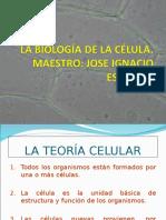 estructuras celulares 2012.2013.ppt