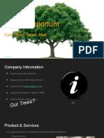 csit business presentation