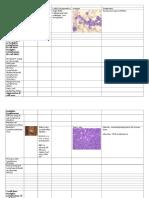 Summary Table - Hematologic Malignancies
