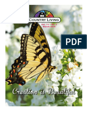 Creation is Beautiful: Country Living