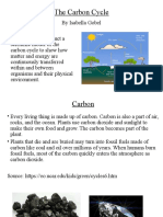 carbon cycle by isabella gobel