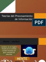 Teorías Del Procesamiento de Información