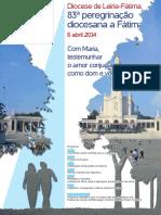 Peregrinação Cartaz 2014
